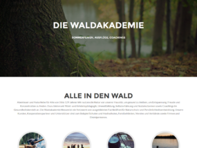 Website Waldakademie
